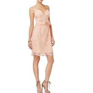 NWT Guess Solstice Lace Bodycon Dress